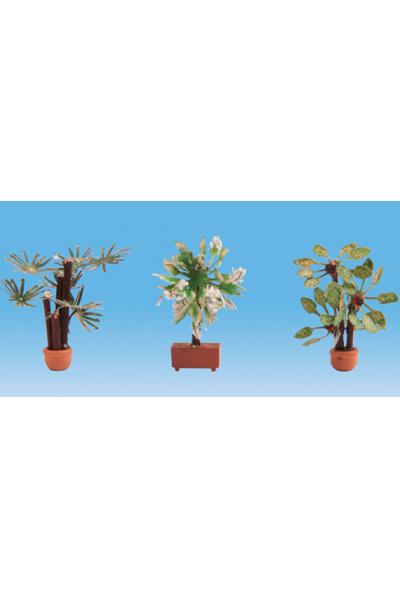 Noch 14023 Средиземноморские растения 1/87